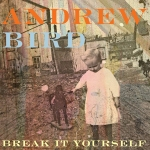 Break It Yourself album cover art