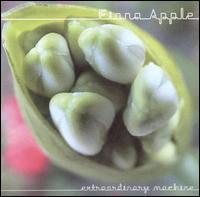 fiona apple, extraordinary machine, album, cover, art