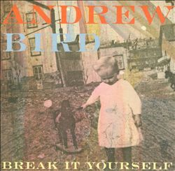 andrew bird break it yourself album cover art