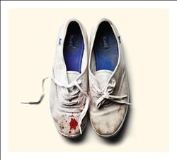 sleigh bells reign of terror album cover art