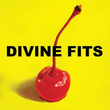 Spoon and Wolf Parade supergroup Divine Fits album cover art