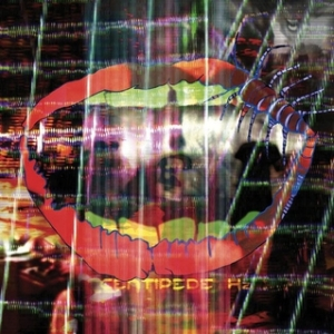 animal collective centipede hz album cover, cover art, music review