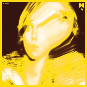 New album from Ty Segall Twins album cover