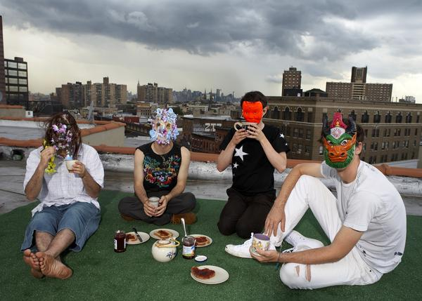 Animal Collective, the band